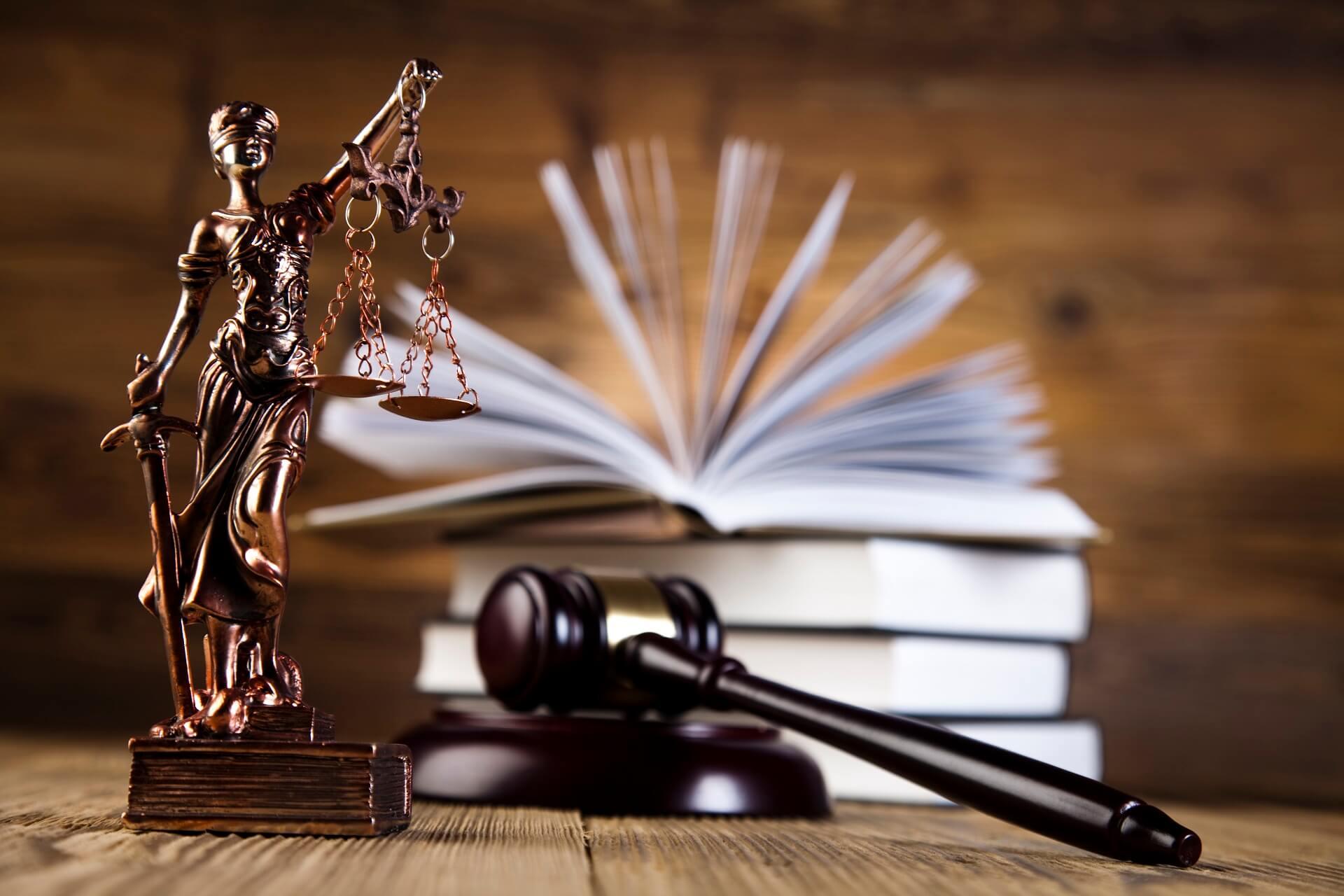 охоронно-юридична фірма Гепард - оформлення конституційної скарги